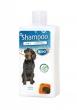 Shampoo 2 in 1 250ml