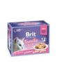 brit kattenvoer 2