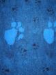 vetbed blauw
